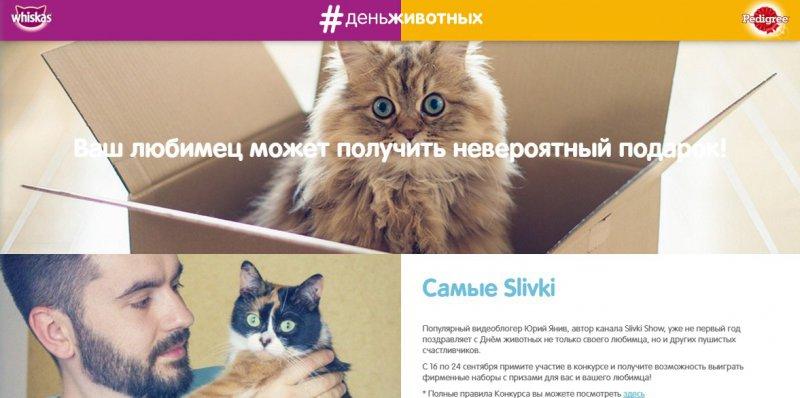 Конкурс Whiskas: «Что говорят животные о заботе»