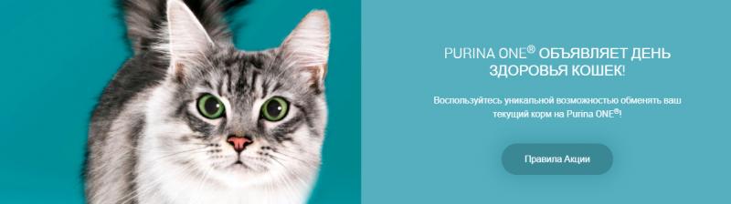 Призы за покупку Purina ONE в Ленте до 9 июня 2019 года